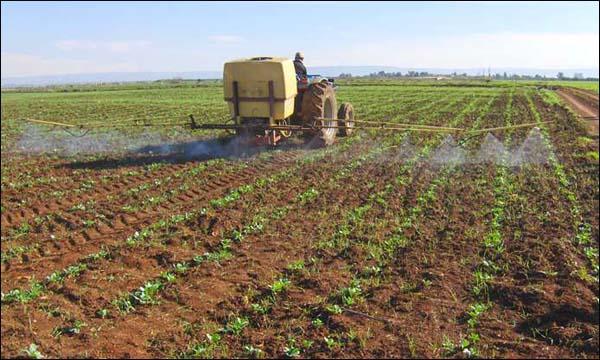 """صورة """"الزراعة الجافة"""".. وسيلة جديدة للحفاظ على المياه"""