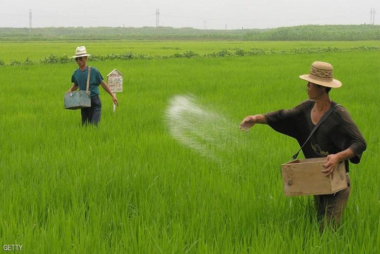 صورة مشروع قانون يحظر زراعة المحاصيل المعدلة وراثيا في المانيا