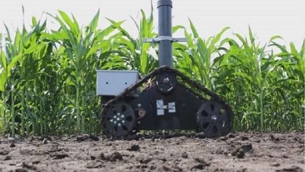 صورة علماء يطورون روبوتا لمراقبة نمو المحاصيل الزراعية