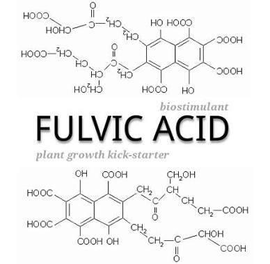 صورة فوائد حامض_الفولفيك ( Vulvic_Acic )