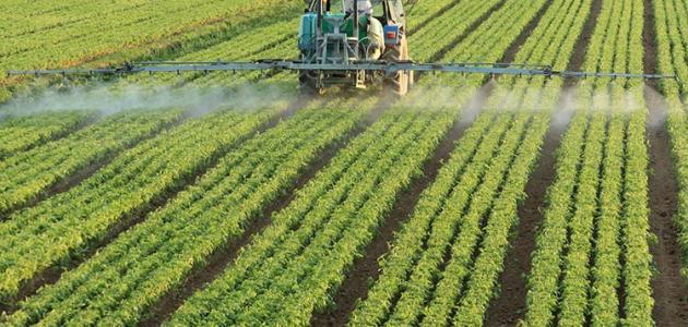 صورة اللجان المصرية الموريتانية المشتركة تبحث تفعيل سبل التعاون الزراعي بين الجانبين