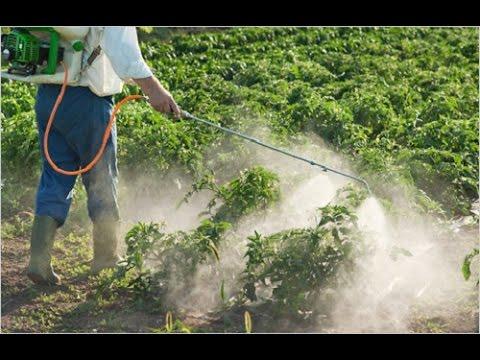 صورة المبيدات وتقسيماتها والاستفادة القصوى من برامج الرش