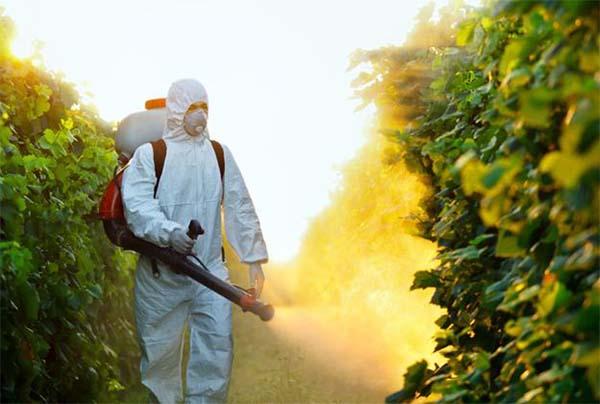 صورة الانتهاء من تأهيل 454 مطبق مبيدات فى 11محافظة