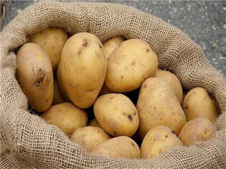 صورة صادرات مصر من البطاطس ترتفع مع بداية عام 2019