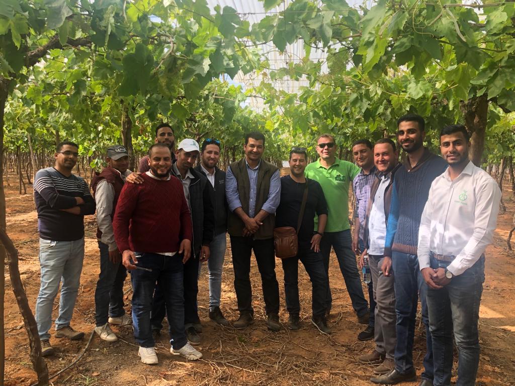 صورة وفد شركة جيسا الإسبانية يتفقد عددا من المزارع في ضيافة شركة جرين أبل للاستثمار الزراعي