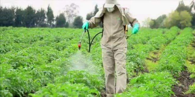 صورة تعرف على أهم محددات استخدام وخلط المبيدات