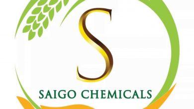 صورة الأستاذ الدكتور شريف عبدالدايم : سايجو للأسمدة والمخصبات الزراعية تنتج أسمدة عالية الجودة