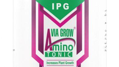 صورة فياجرو أمينو تونك منشط للنمو الخضري من شركة النجمتين للتنمية الصناعية والزراعية
