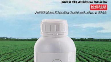 صورة لينا كال يساعد النبات على مقاومة الظروف الجوية المتغيرة من شركة لينا كيم