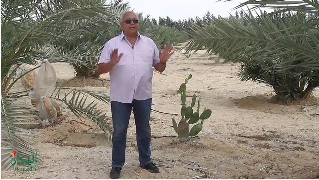 صورة خمسة لنخلتك مع المهندس خالد الهجان – الحلقة 7- الموسم 2